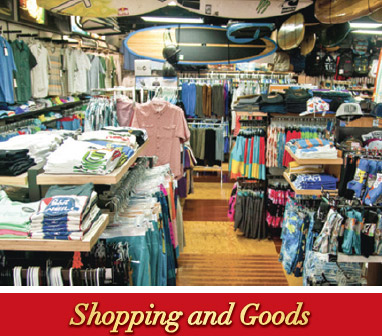 Shopping and Goods 2016