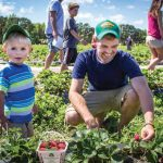 Lowcountry Strawberry Festival Returns To Boone Hall: A Berry Good Time
