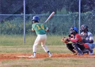 Black Baseball East of the Cooper 8