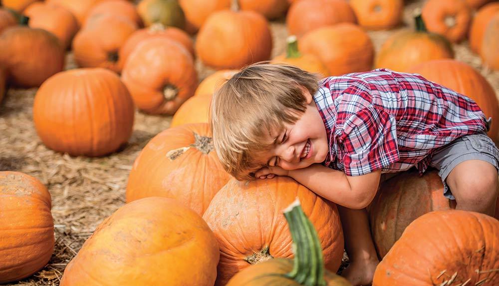 A boy in a pumpkin patch pretending to be asleep