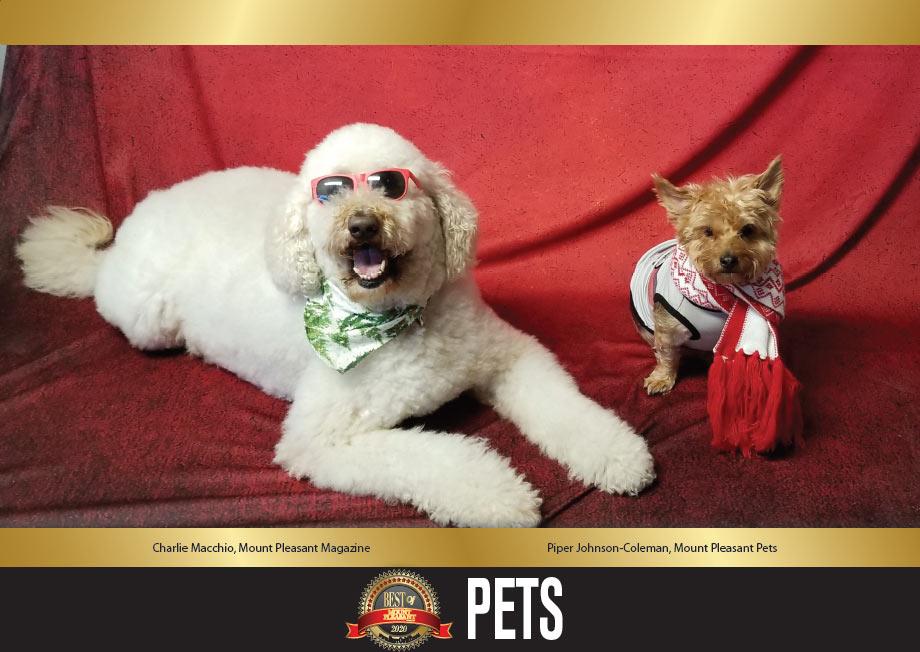 Best of Mount Pleasant 2020 PETS