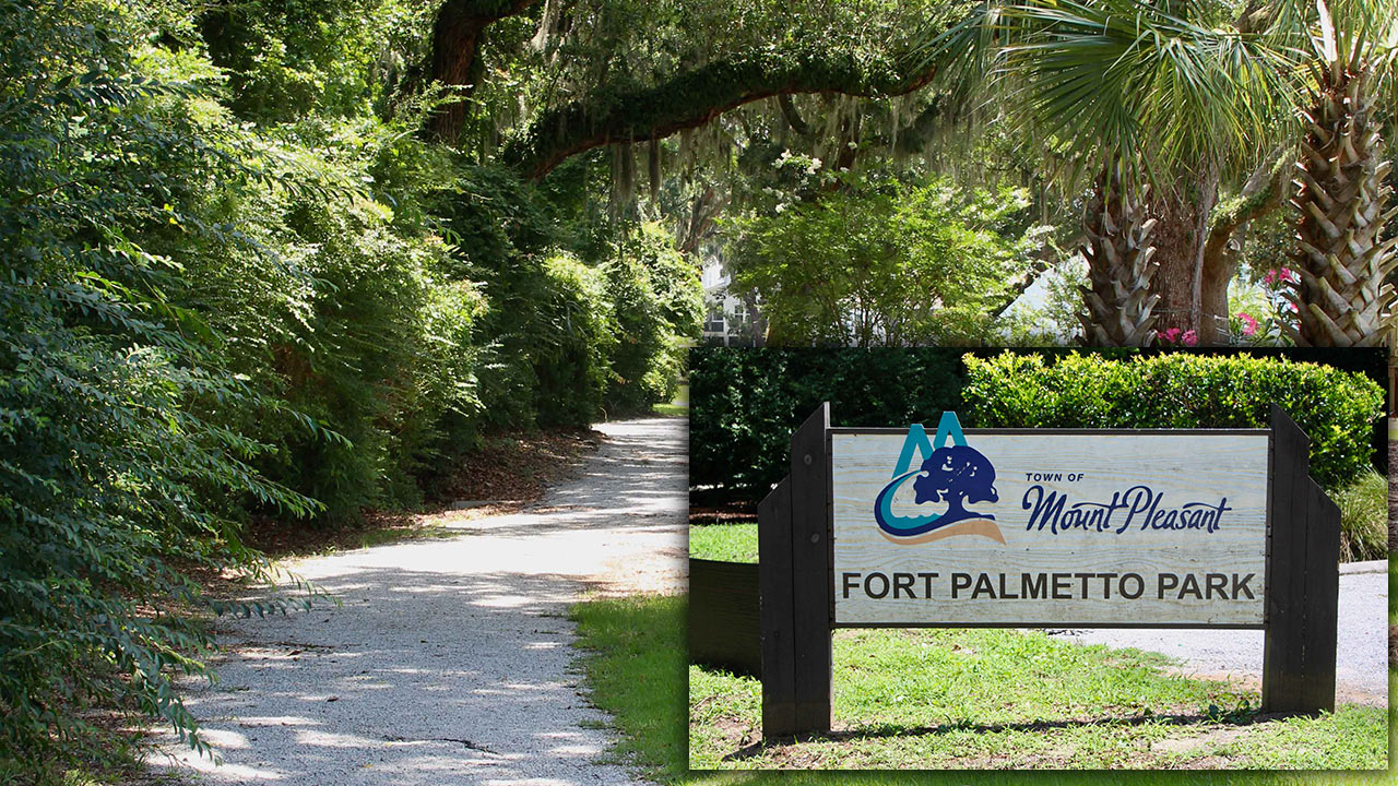 Fort Palmetto Park photos, by William Beebe.