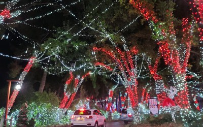 REVIEW: New SIX FLAGS Holiday in the Park Drive-Thru Experience is a fantastic event for this season