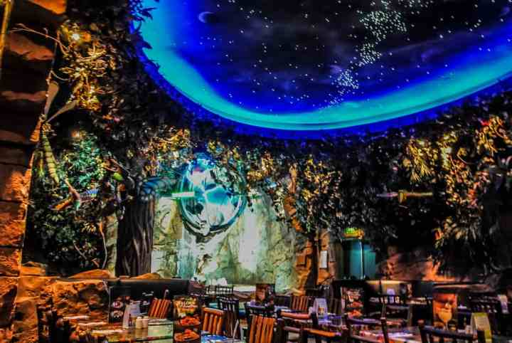 Disney Village Rainforest Cafe