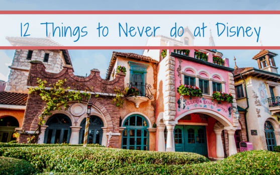 Things to never do at disney