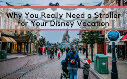 Disney properties are huge and little legs can't take all of that walking, especially for 10 days straight. Having a strolling is a great way to keep the peace. Find out more reasons why your family needs a stroller on it's next Disney vacation. Should I take a stroller to Disney? Stroller Tips for Disney World #Disney #DisneyKids #DisneyWorld #FamilyTravel #Travelwithkids