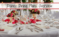 Disney Dining Plans Overview