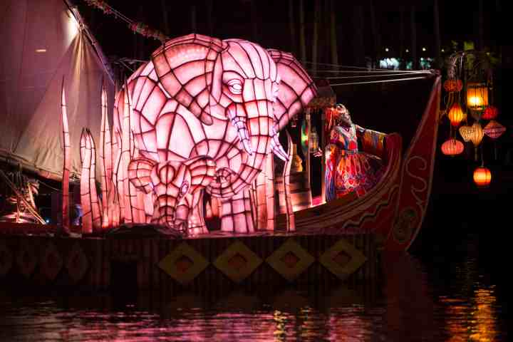 Animal Kingdom's new Rivers of Light nighttime experience brings the beauty of nature to life with color changing floats, fountains, water screens, music, and much more.