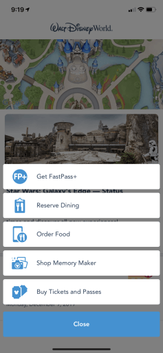 Having a My Disney Experience account and downloading the My Disney Experience App is critical for your Walt Disney World vacation planning. This post guides you through the set-up process and tips on how to navigate the My Disney Experience app and website features. #Disney #DisneyVacation