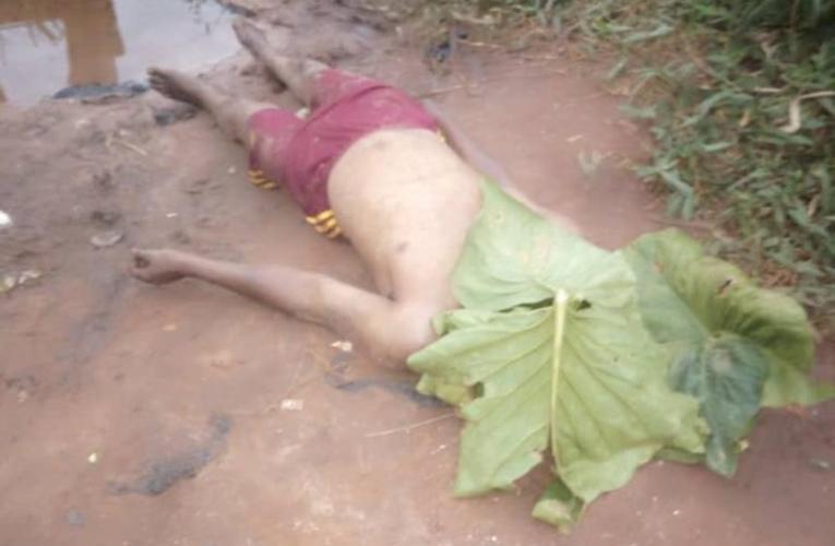 Covid-19 Lockdown: one dead as police, thugs ransack Ogun community