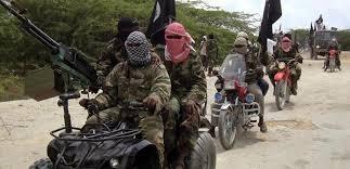 Full list: UAE names 6 Nigerians, 47 others as 'terrorism sponsors'