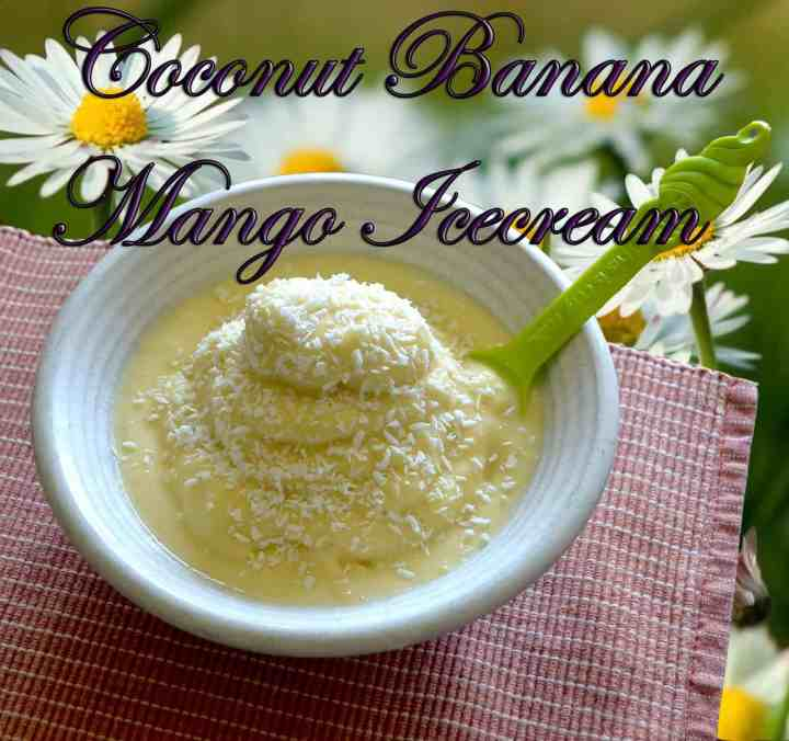 Coconut-Banana-Mango Ice cream! (TOP PICK)