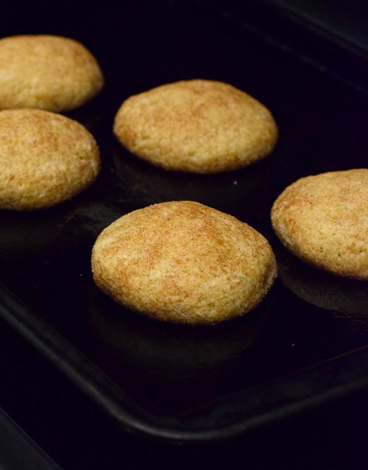 keto cinnamon sugar cookies