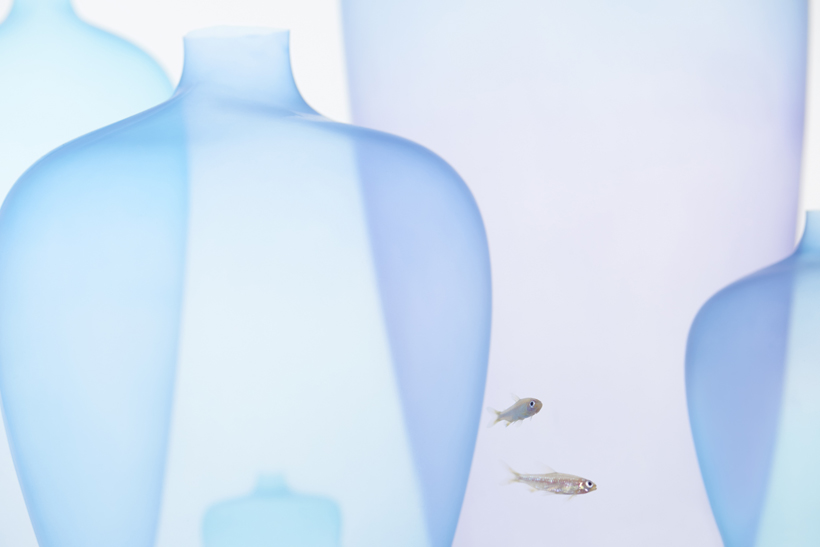 nendo-jellyfishvase-mouvement-planant-07