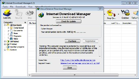 IDM Crack 6.38 Build 15 + Serial Number 2021 [Latest]