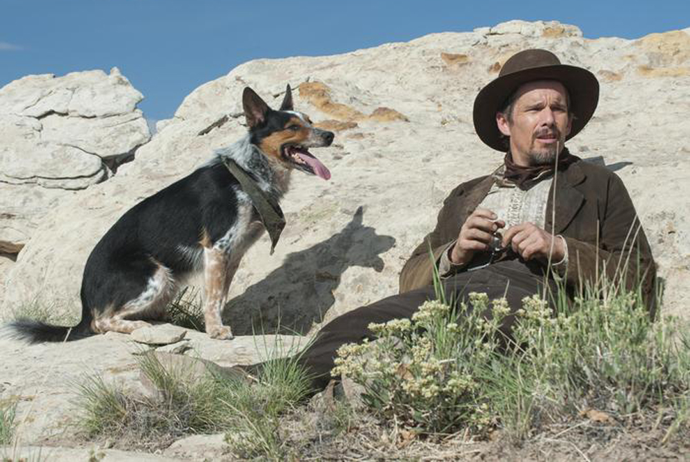 """Jumpy the Dog and Ethan Hawke in """"In a Valley of Violence"""""""