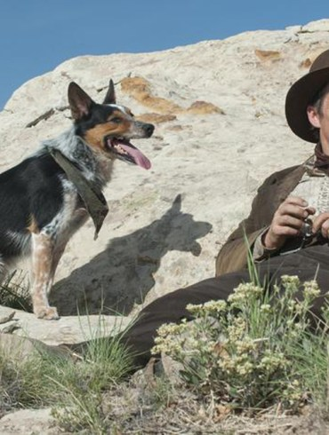 "Jumpy the Dog and Ethan Hawke in ""In a Valley of Violence"""