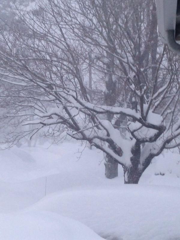 Boston Snow Sunday