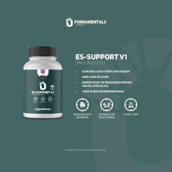 Fundamentals ES-Support V1 DIM & Broccoli