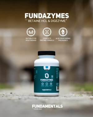 Fundamentals Fundazymes