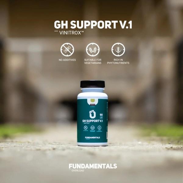 Fundamentals GH-Support V1