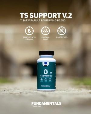 Fundamentals TS-Support V2 Sarsparilla & Siberian Gingseng