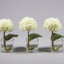 Visite-nos e conheça a nossa colecção de Vasos e Plantas.