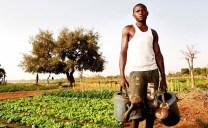 Naturnaher Landbau