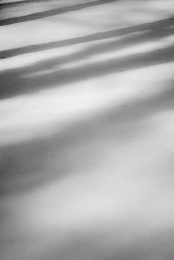 wpid-shadows__sunlightApril_03__2013-2.jpg