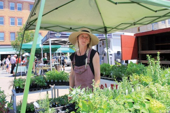Hyde Park Farmers' Market - Meet Eliza of Wildwood Flora (Cincinnati). She produces specialty cut flowers and plant starts on her urban farm, using sustainable methods of good stewardship with the land.
