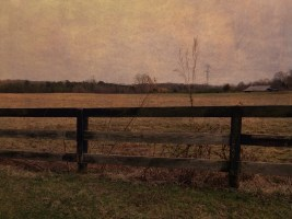 The Fence to Anywhere
