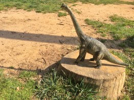 Tropical Rain Forest Dino