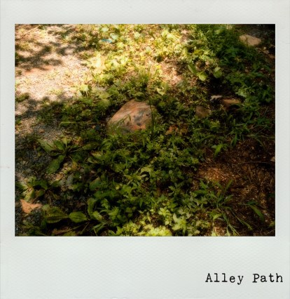 Alley Path