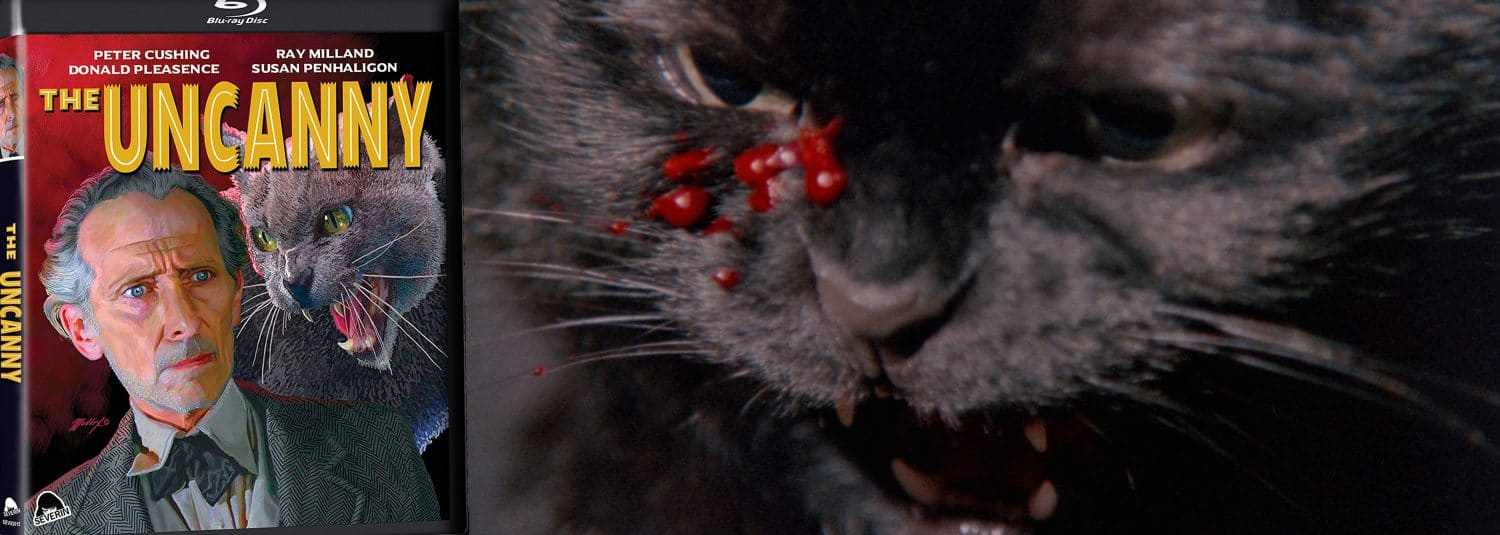 Three tales of feline terror come home as The Uncanny arrives on Blu-ray from Severin Films.