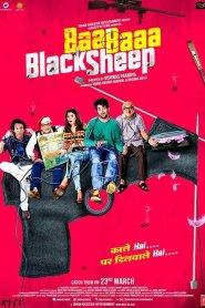 Baa Baaa Black Sheep 2018