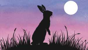 New Netflix WATERSHIP DOWN