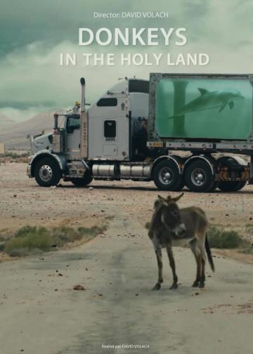 Les ânes en terre sainte