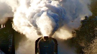 """Mystery Train"""