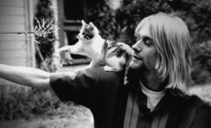 Kurt Cat