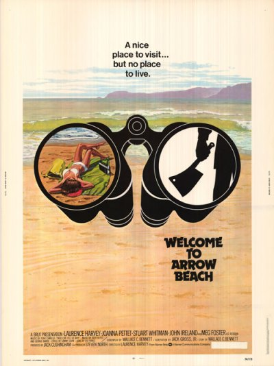 arrow beach poster