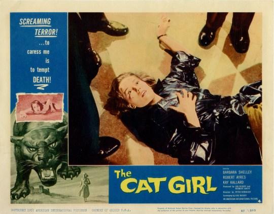 cat girl 5