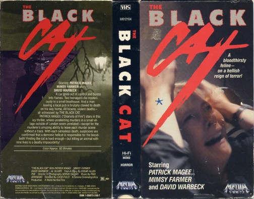 THE-BLACK-CAT 4