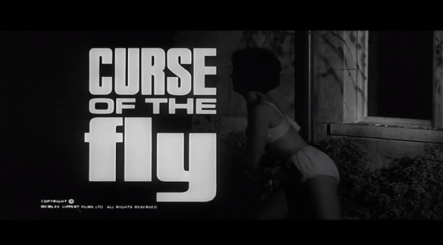 Curse of the Fly titke