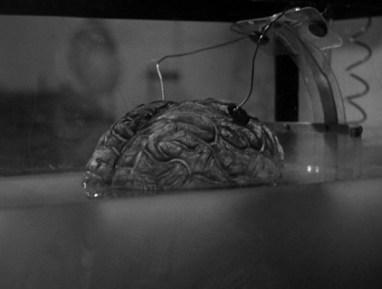 Donovan's-Brain-1953