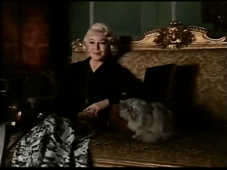 Persecution-Lana-Turner-cat