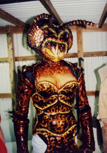 wasp-woman-13