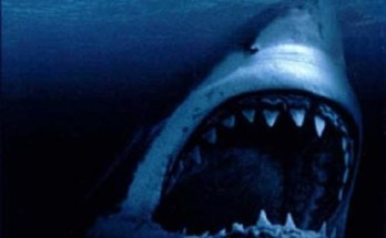 Shark-Attack-movie-film-action-horror-1999-review-reviews-2