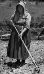 Woman tilling soil with a hoe