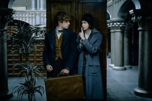 Eddie Redmayne & Katherine Waterston in Fantastic Beasts and Where to Find Them