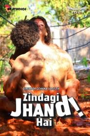 Zindagi Jhand Hai (2020) Hotshots Originals Hindi Shot Film